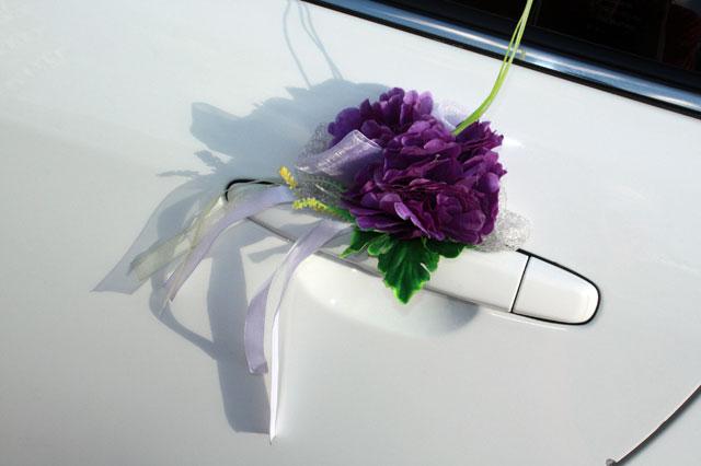 violet_white-02